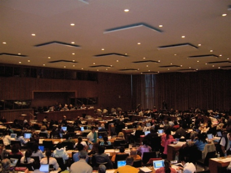 United Nation Permanent Forum on Indigenous Issues